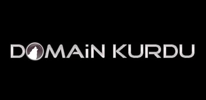 domain-kurdu-logo